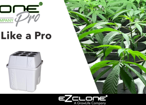GrowLife, Inc. Launches Hemp Focused EZ-CLONE Platform to Serve as Leading Industrial Hemp Cloning Resource