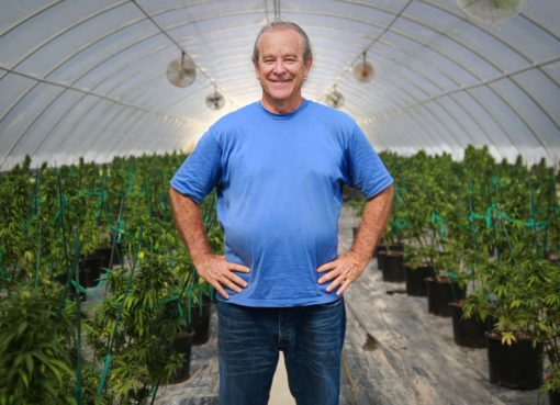 Hemp, Inc. Applauds Research Surrounding the Antiviral Potential of Cannabis Compounds
